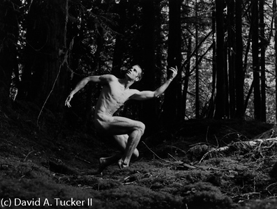 Danceworks #323 (c) David A Tucker II 2011