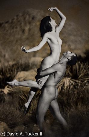 Danceworks #76 (c) David A  Tucker II 1999