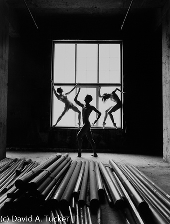 Danceworks #485  (c) David A Tucker II