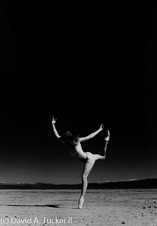 Danceworks #440 (c) David A  Tucker II 2015