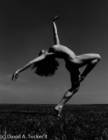 Danceworks #242 (c) David A  Tucker II 2009