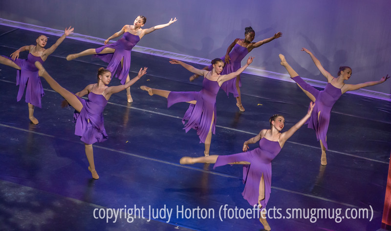 Quinn and the Davis Dance Company