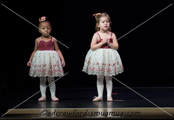 2015 Recital Rehearsal Wed
