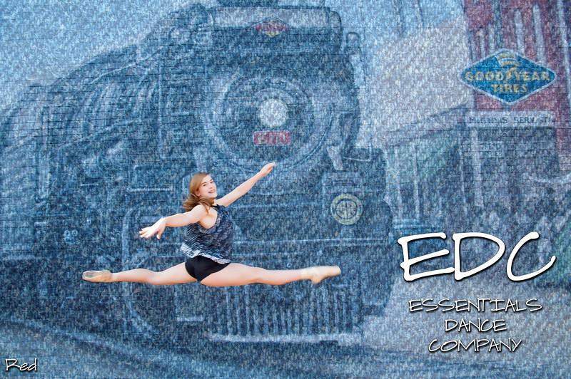 EDC-Bridgette-Leap-Denim-texture