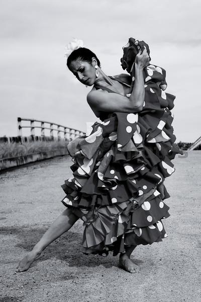 Flamenco Dancer Anita Loynaz
