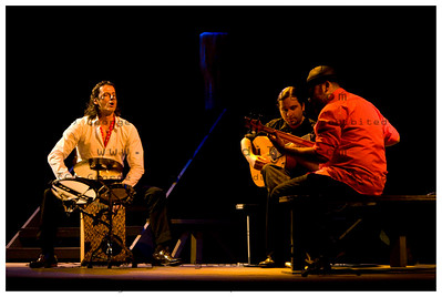 2 -flamenco(P)_0006