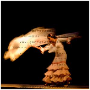 20 flamenco(P)_0037