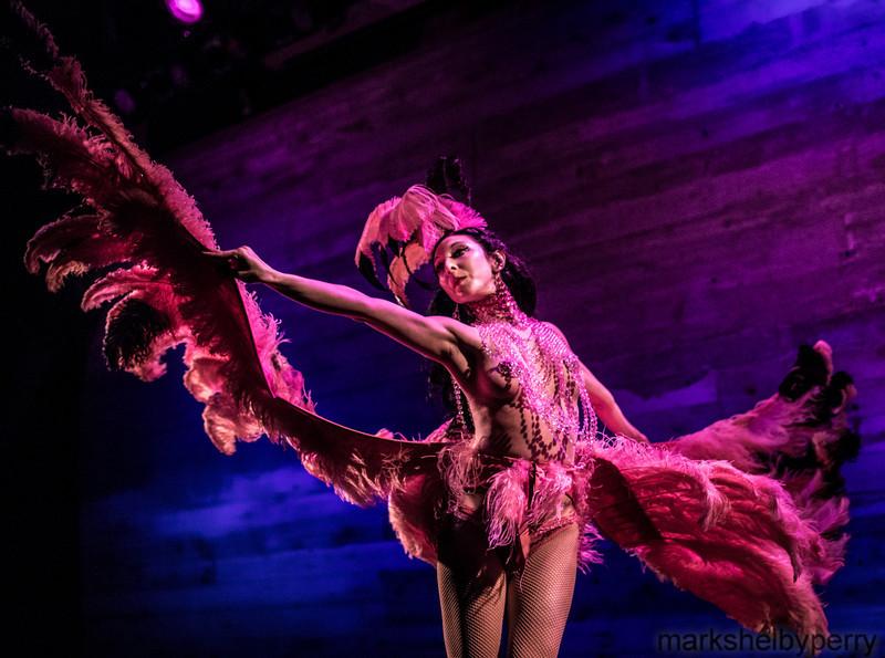 Cassandra Rosebeetle's Flamingo