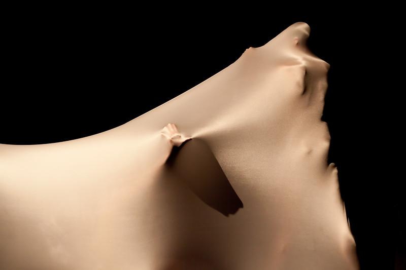 20091206 Gaspard and Dancers - 3 'Chrysalis' (6475nn, 257p, c2009 Dilip Barman)