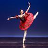 _P1R8462 - 150 Catherine Voorhees, Classical, Don Quixote