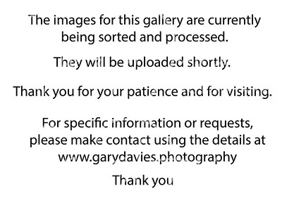 Images Being Processed Notice