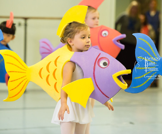 Little Mermaid Pre