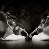 Dance : 26 galleries with 11909 photos