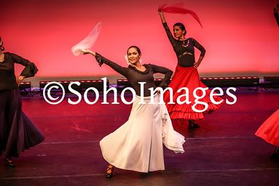 Patel Evening of Dance  2017