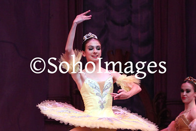 Sleeping Beauty Friday Cast Performance 2014