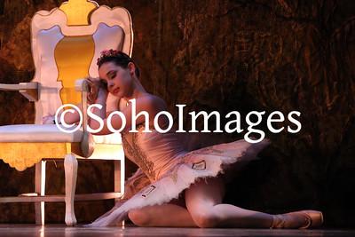 Sleeping Beauty Saturday Night Performance 2014