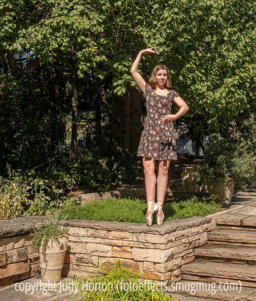Quinn at the Denver Botanic Gardens