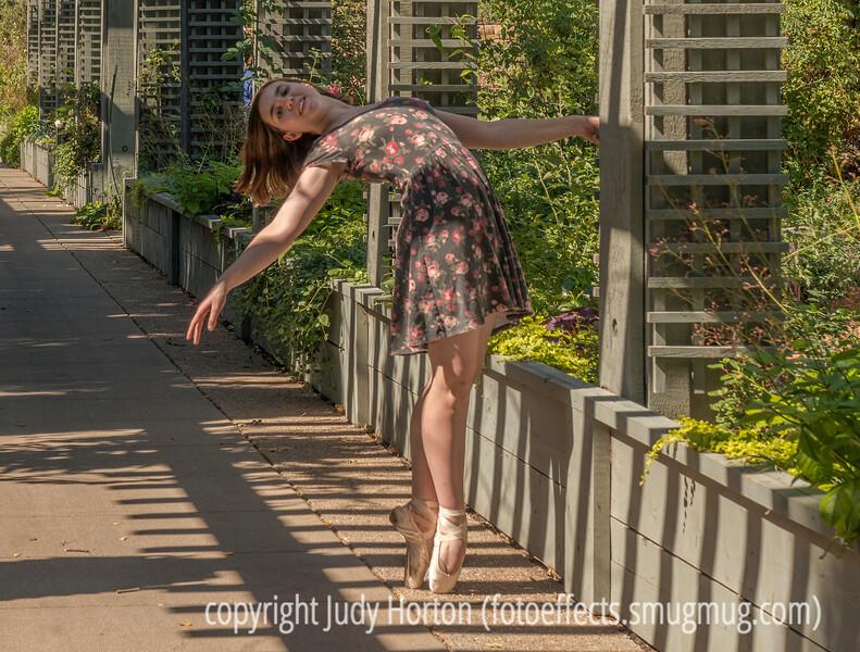 Quinn at the Botanic Gardens