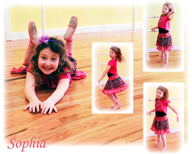 Sophia Fussman Finished Collage 2