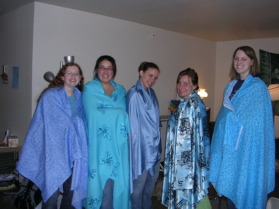 Symphony in Blue: Adventures in Sewing 2006