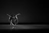 San Francisco Ballet Dancers Muriel Maffre and Damian Smith in Christopher Wheeldon's Quarternary.