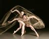 160409 Ballet under Glass 42-mm