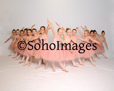 Suncoast Academy of Dance 2014