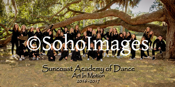 "Suncoast Academy of Dance ""AIM Shoot"" 2016"