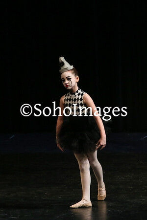 Suncoast Academy of Dance