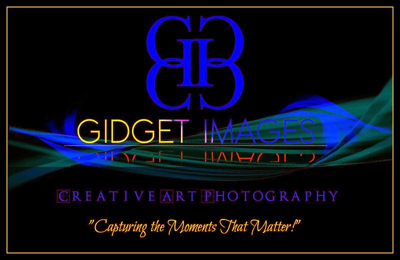 GIDGETimages, LLC