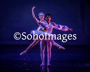 Tampa City Ballet 2016