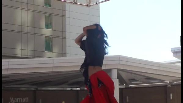 Angelina Lebanese Festival 4-8-17