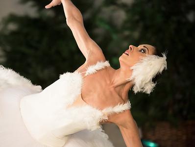 Dancer: Maria Allash Dying Swan