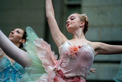The Washington Ballet Studio Company