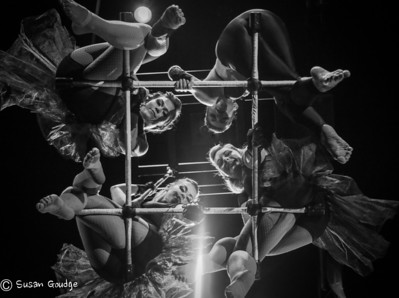 Trapeze Photoshoot
