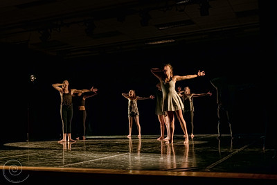 Adaptation (redefined), choreographed by Gavin Myers
