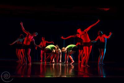 Viva La Fleur, choreographed by Rita Aronstein