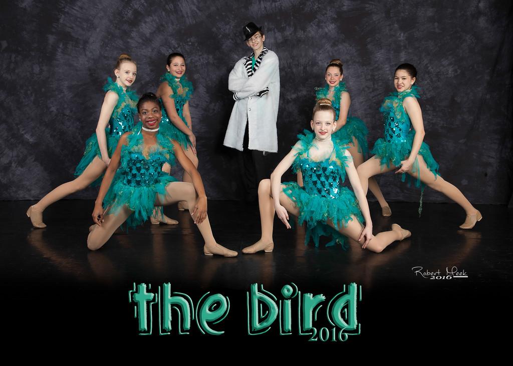 15_5R_TheBird
