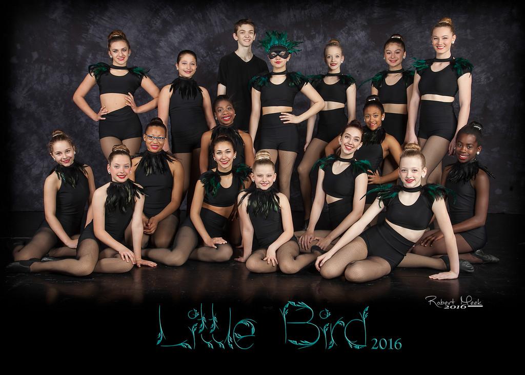 6_5R_LittleBird