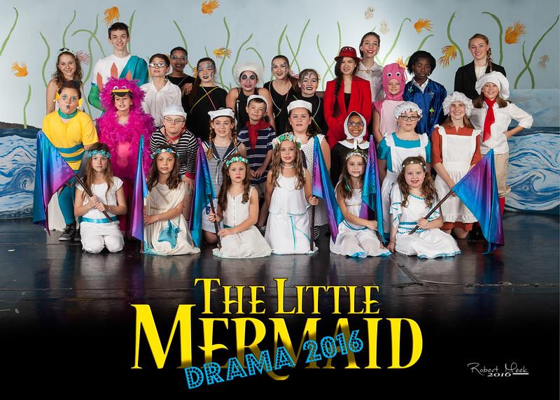 33_5R_Little Mermaid