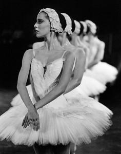 """Sonia Rodriguez """"Swan Lake"""""""