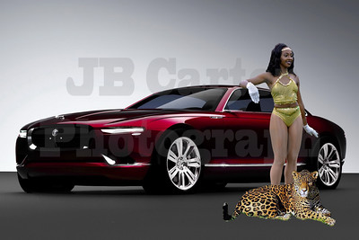 Jaguar-116