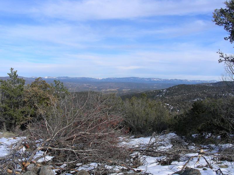 Gila Wilderness | Gila National Forest | New Mexico | 2/5/2010