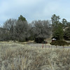 Lake Roberts Picnic Area | Gila National Forest | New Mexico | 2/5/2010