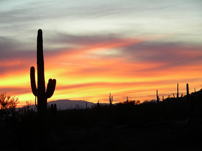 Sunrise at campground | E Picacho Peak State Park | Picacho, Arizona | 2/2/2010