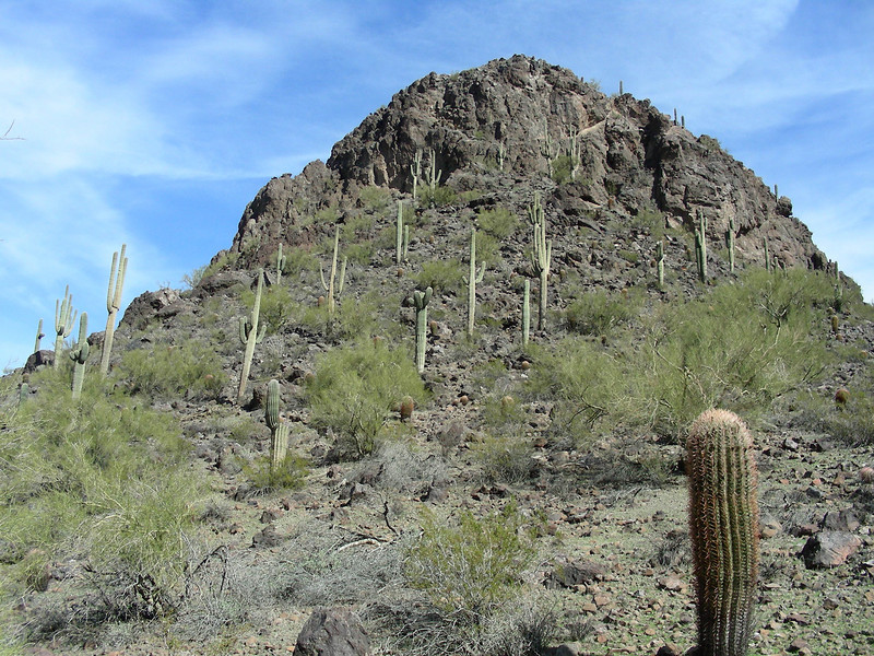Hiking the Calloway Trail | <b>SE</b> Picacho Peak State Park | Picacho, Arizona | 2/2/2010
