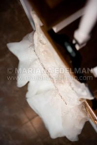 Mariana_Edelman_Photography_Cleveland_Wedding_Feldman_0008