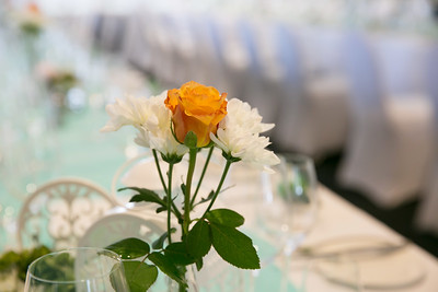 Wedding (848)
