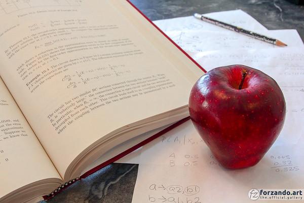 Study, Study
