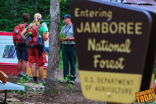 Welcome to Jamboree National Forest